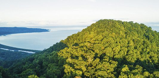 El Puerto de Tribugá y las malas decisiones
