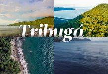 Un montón de reflexiones sobre Tribugá