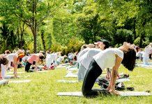 Yoga para el alma