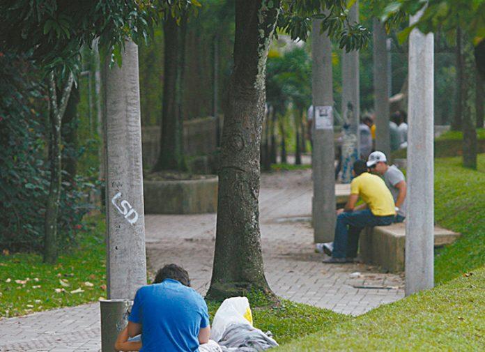consumo de alucinógenos en parques