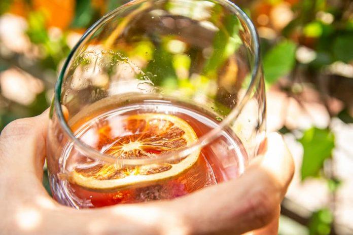 Coctel Gin tonic de camu-camu