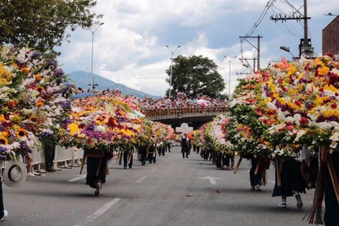 Desfile de Silleteros en vivo