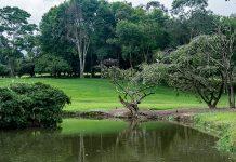 El Rodeo en Medellín logró convertirse en una Reserva Nacional