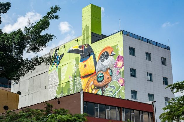 La 10 expresa arte urbano -transformación de la calle 10