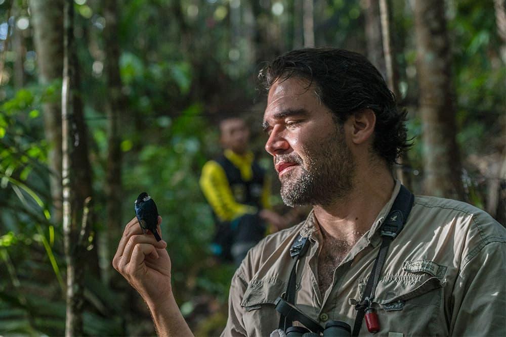 Avistamiento de aves en Colombia
