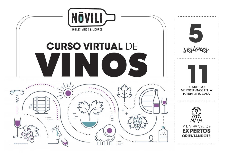 Curso virtual de vinos. Aprende y disfruta con todos los sentidos