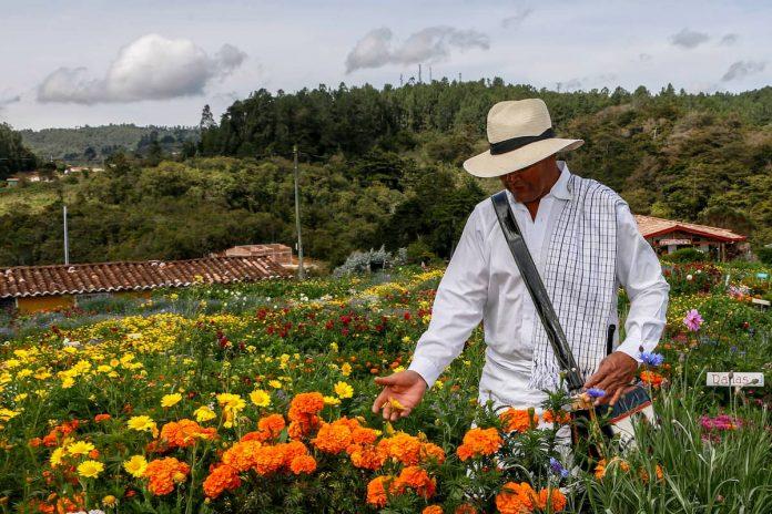 Feria de las Flores 2020 será virtual y en noviembre