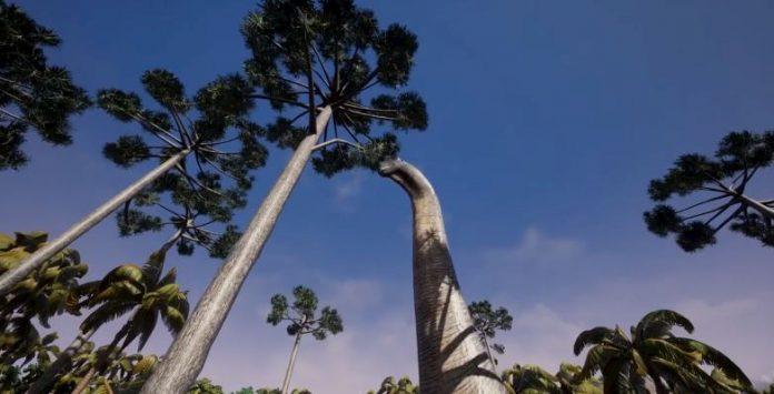Colombia tierra de gigantes