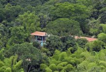 Tinamu Birding Reserva Natural