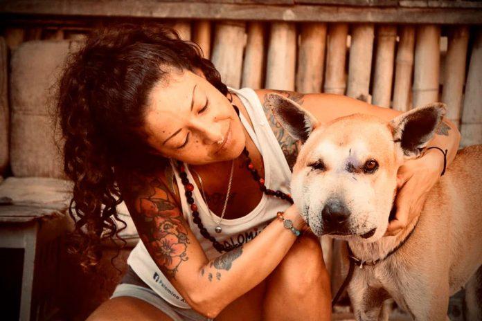 campaña para ayudar a los perros Héroes de los Peludos
