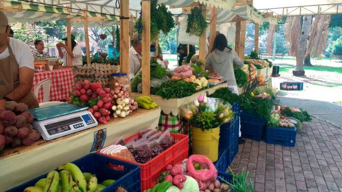 Este sábado 10 de octubre regresan los Mercados Campesinos