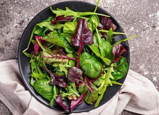 PANC-Las plantas alimenticias no convencionales