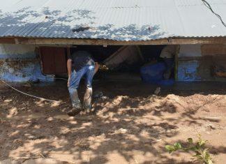 Es prioridad restablecer condiciones de vida de los damnificados en Dabeiba: Antioquia Presente