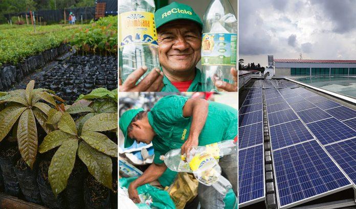 Desarrollo sostenible: la única alternativa posible