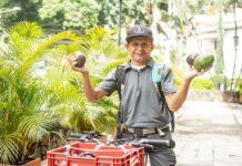 Pedro Adrián Puche Sánchez vende aguacates en barrios de Medellín