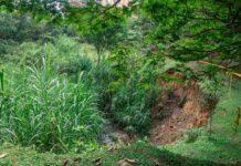 Quebrada La Paulita, en el Parque Ambiental La Frontera, entre vertimientos y deslizamientos