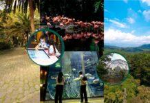 El turismo de la ciudad en una tarjeta:Medellín City Card