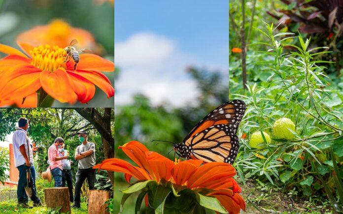 Parque Las Mariposas, En la Loma del Esmeraldal en Envigado