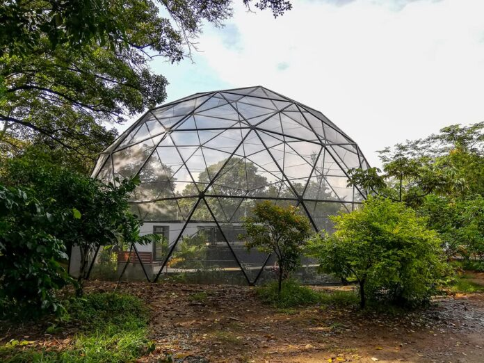 Un recorrido para apoyar al Jardín Botánico