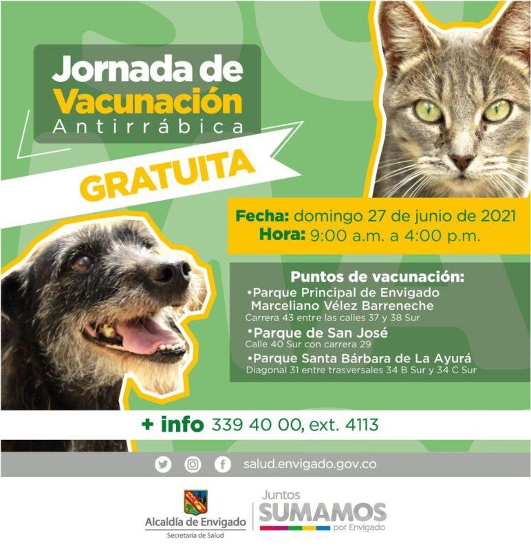 ¡A vacunar a los perros y gatos contra la rabia! La meta es inmunizar 62.000 animales de compañía