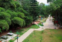 El Canal Parque de Telemedellín reabre sus puertas a la ciudad
