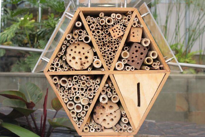 Refugio de abejas en Medellín en la sede del Área Metropolitana