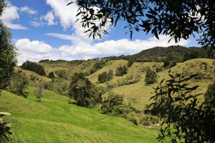 Los Tambos, nuevo parque ambiental en el Oriente antioqueño en la Ceja