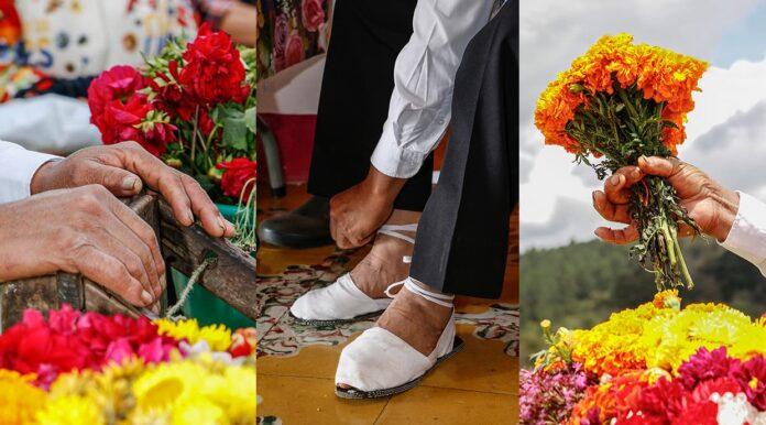 Programación oficial de Feria de las Flores 2021