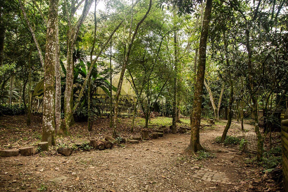 A pesar de las presiones urbanísticas, existe un buen nivel de protección y unos bosques todavía densos.