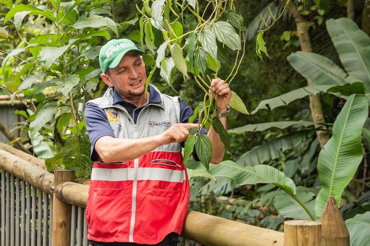 El administrador ambiental John Jairo Arias, adscrito a la secretaria de Medio Ambiente de Envigado, pasó hace una semana a la dirección de Bienestar Animal.
