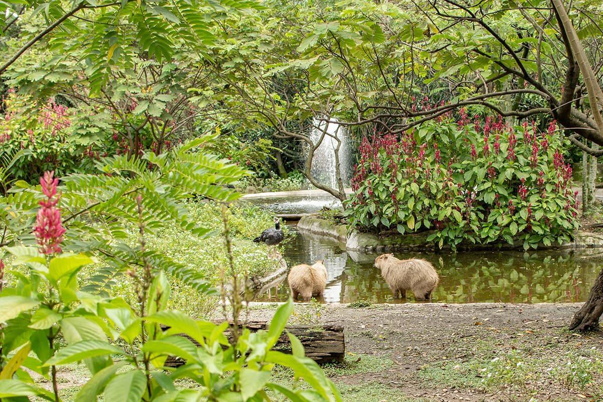 El parque de la Conservación: nuevo nombre, nueva ruta