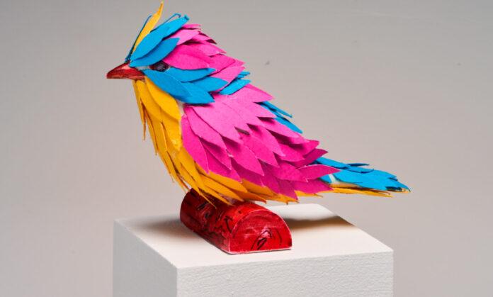 Festival de las Aves de Medellín Una celebración de las aves y la naturaleza