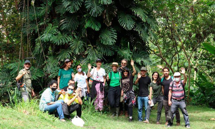 La Savia Vegetal invita a su Exposición Botánica Silvestre en El Escobero