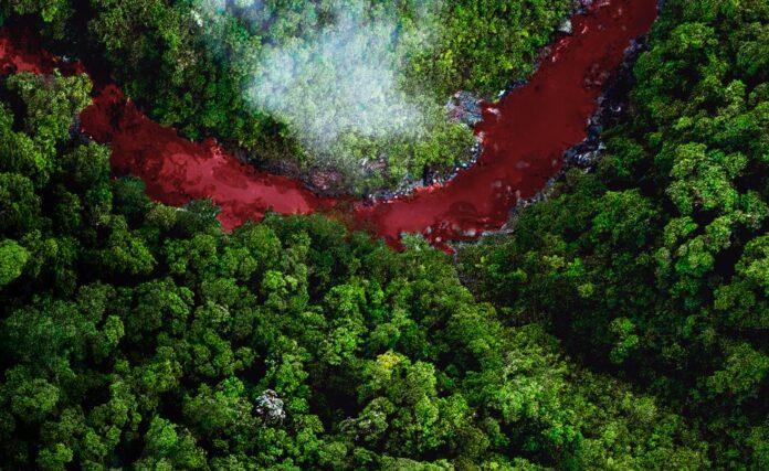 Planet On 2021, un festival de cine ambiental para entender más el planeta