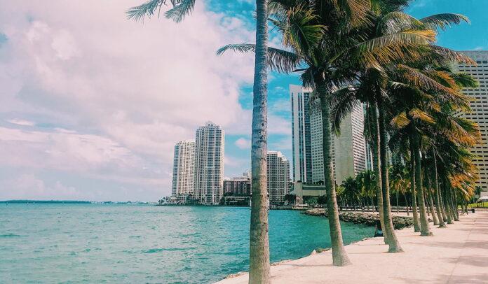La aerolínea Spirit tiene una nueva ruta directa Miami - Medellín - Miami