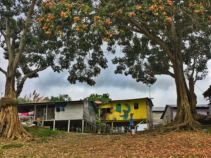 Reflexiones sobre el Amazonas