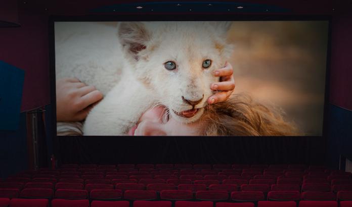 Cartelera de cine en Medellín, estrenos semana del 10 de enero