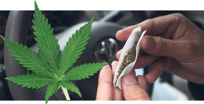 La marihuana, entre mitos y realidades