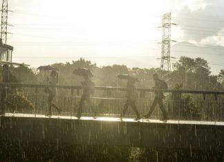 Probabilidad de lluvia