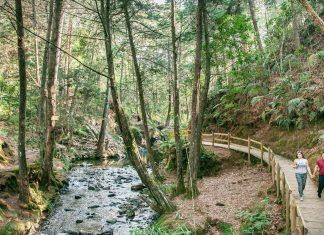 Certifican al Parque Arví en Turismo Sostenible